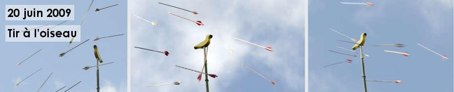 Photos du traditionnel tir à l'oiseau, à la perche, lors de la fête annuelle de la Compagnie, le 20 juin 2009, au château des Garennes, à Clohars-Fouesnant.