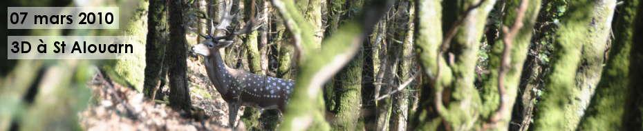 Photos du concours qualificatif de tir 3D, le 07 mars 2010, dans les bois de Saint Alouarn.